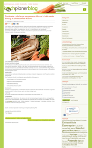 Wordpress Blog Webdesign Beispiel